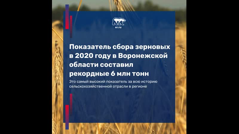 Владимир Нетёсов поблагодарил аграриев региона за их труд