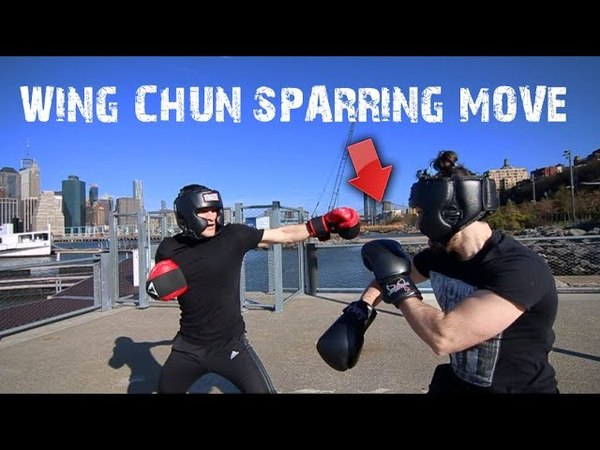 Wing Chun Technique for Sparring! | Wing Chun Wednesday