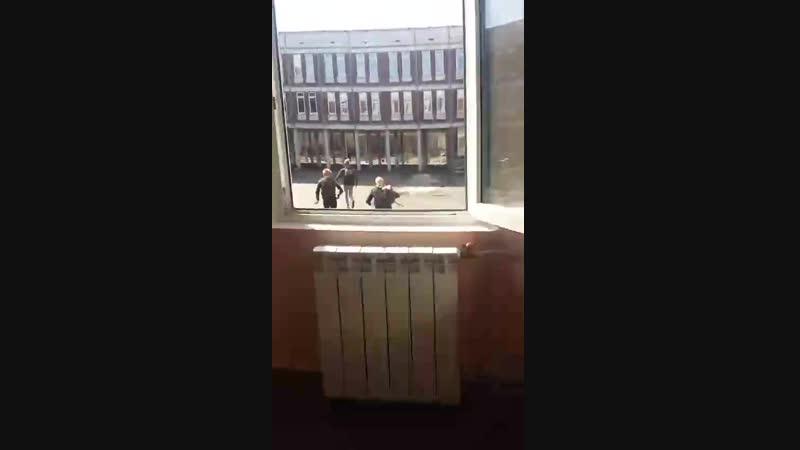 паунс в окно