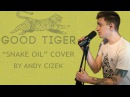 Good Tiger Snake Oil VOCAL COVER
