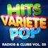 Hits Variété Pop - Drag Me Down