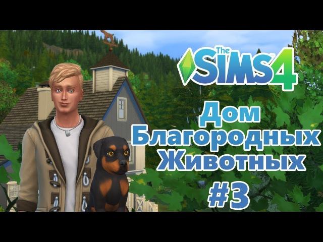 The Sims 4 Дом благородных животных 3 Полон дом