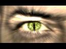Бои без правил - катализатор эволюции