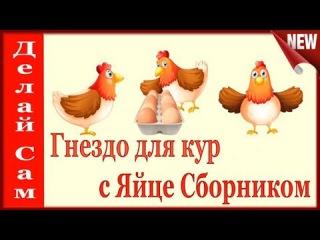 Гнезда для кур несушек с яйцесборником своими руками. Чтобы не клевали яйца и всегда были чистыми .