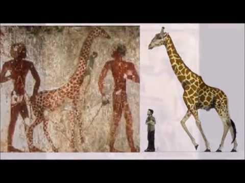 • народ адиты \ кто строил пирамиды, баальбек и тд.