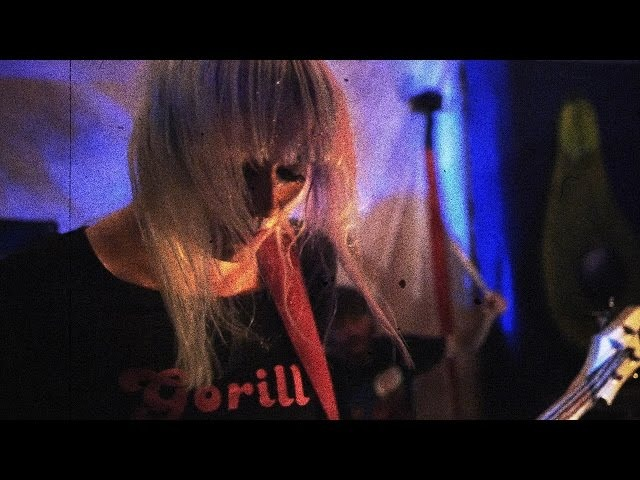 GORILLA THREE SQUEALER OFFICIAL VIDEO HD