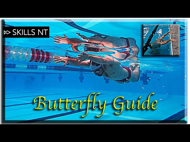 Improve your Butterfly swimming 5 Stages technique for beginners