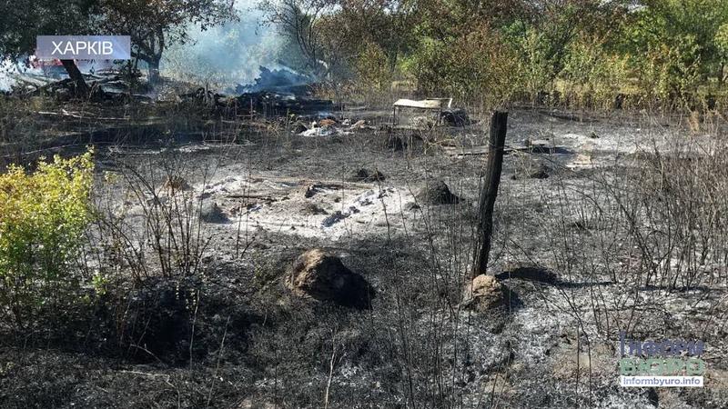 Згоріла заживо: на згарищі сухої трави виявили тіло 82-річної жінки