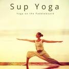 Обложка Shiva - Yoga Teacher
