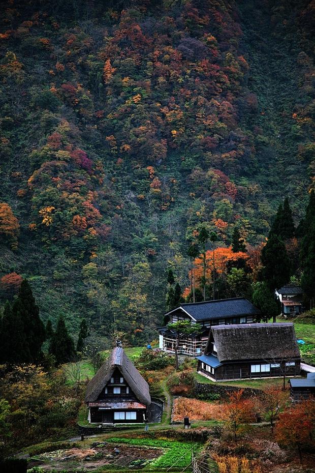 Осень в Японии. Самые красивые места, изображение №5