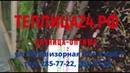 Отзыв Теплицы Дачница ОПТИМА. Теплица24