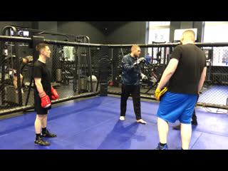 Александр этвиш - классический бокс