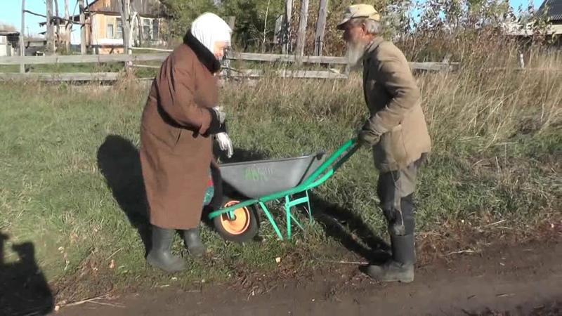 Везу немощную на тележке к дровам. 03. 10. 2019
