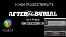 MIXING METAL / DJENT PROJECT-TEMPLATE FULL PRESETS - After the Burial-Lost in the Static intru cover