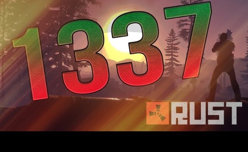 RUST STEAM_0:X:ABA1337Y               10 Year Badge 6LVL UNLIMITED