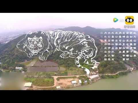 Тигр охраняет родовое имение миллиардера Ли Цзячэн (фэншуй)
