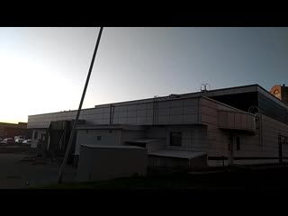Бегают по крыше