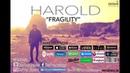 Harold - Fragility (Official Lyric Video)
