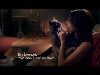 Publicité Sheba avec Eva Longoria (VF)