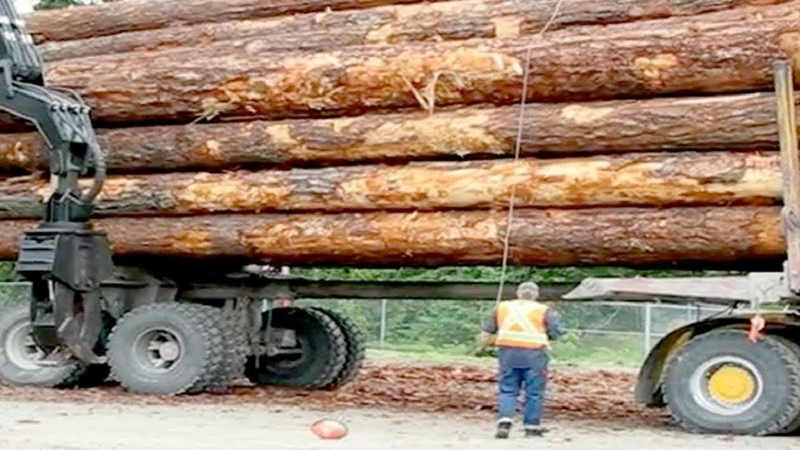 10 Fast Amazing Idiots Biggest Logging Wood Truck Heavy Equipment Operator Machines Skill Working