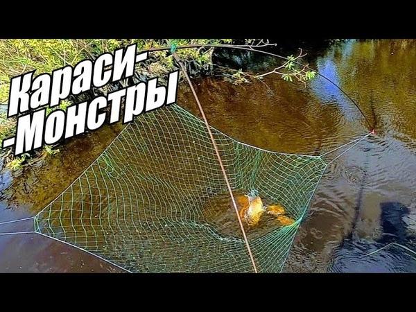 Рыбалка на паук! Огромные караси в болотном ручье! Рыбалка 2020!