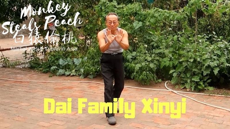 The Rare Art of Dai Family Xinyi Quan - Exploring Xingyi Quan ep8