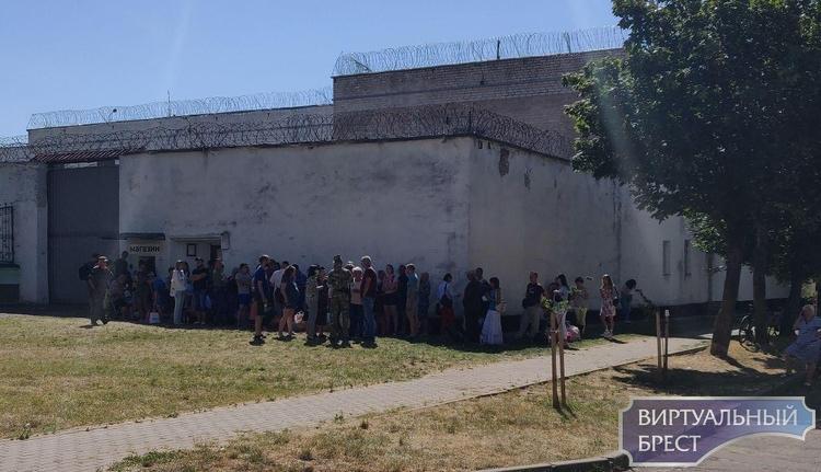 В МВД открывается «горячая линия» для информирования граждан о местонахождении задержанных лиц