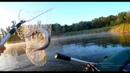Бешеный Клёв Щуки. Рыбалка на Спиннинг. Твичинг.