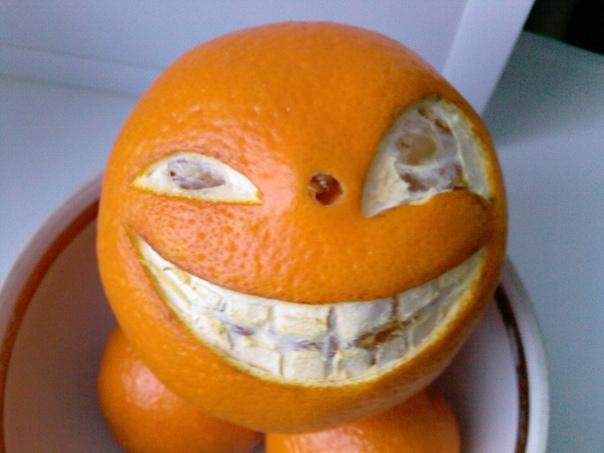 апельсины фото картинки смешные высшая степень награды