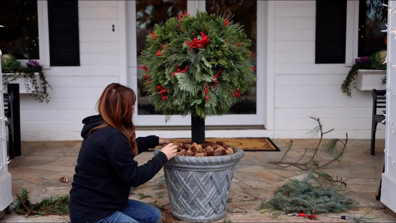 DIY Lollipop Topiary for Christmas 🎄🥰🍭 Garden Answer