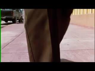 Лучшая служба доставки - Эйс Вентура. Розыск домашних животных (1994) отрывок - сцена - момент.