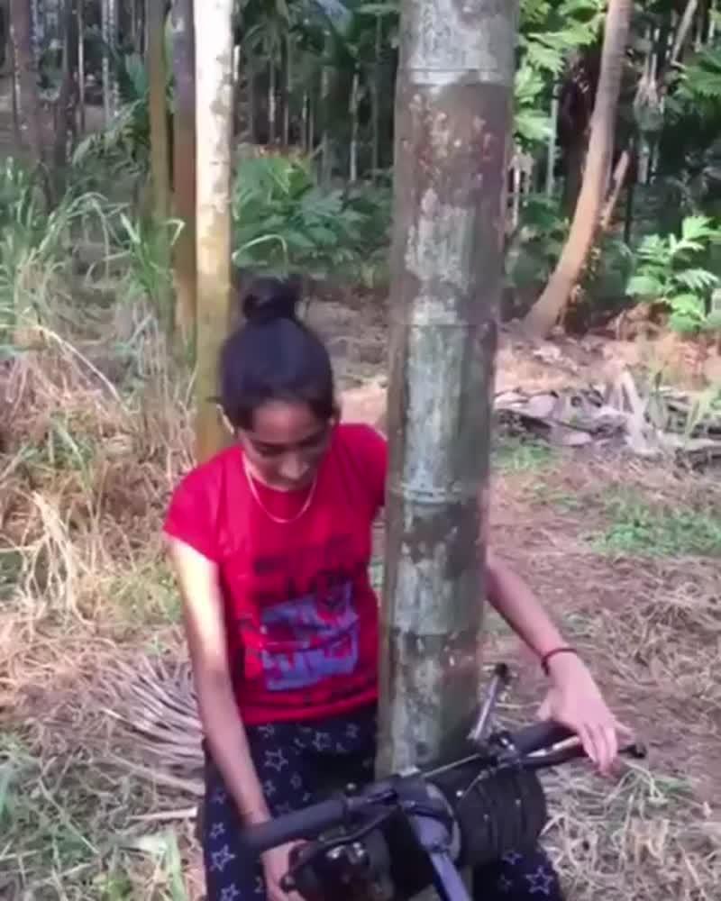Интересная машинка для лазания по деревьям