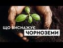 Що виснажує українські чорноземи?   Година Z Тетяною Гончаровою