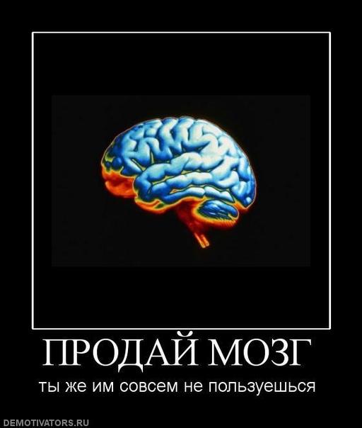 демотиваторы выносить мозг чем запаять
