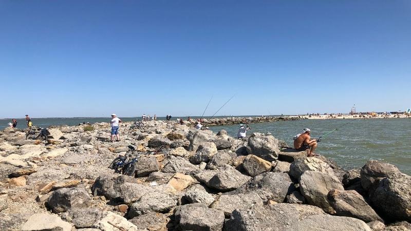 Веста Кросс 1 8АМТ Поездка до Центрального пляжа и Ейской КОСЫ Ейск август 2019