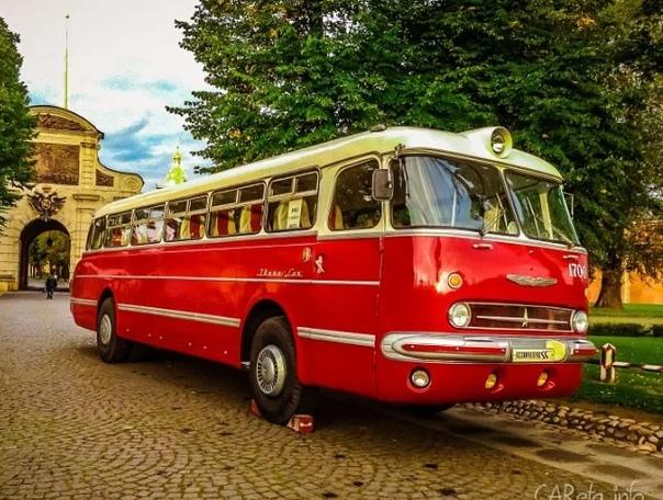 фото ретро автобусов лучше