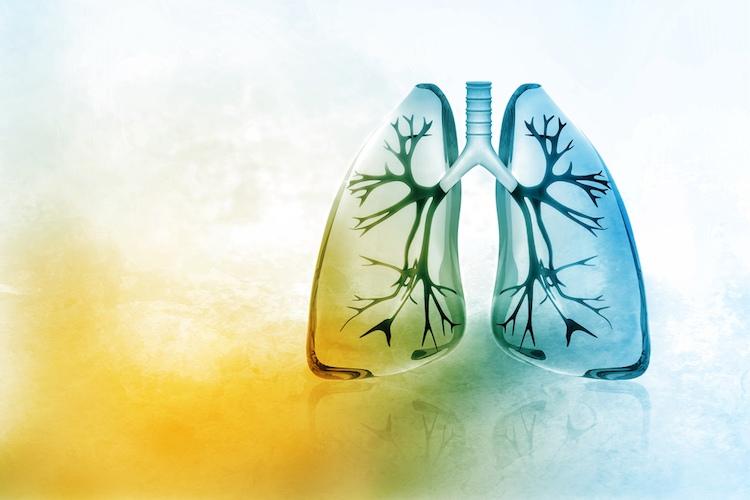 Как очистить легкие курильщика от слизи и смолы: 5 быстрых способов