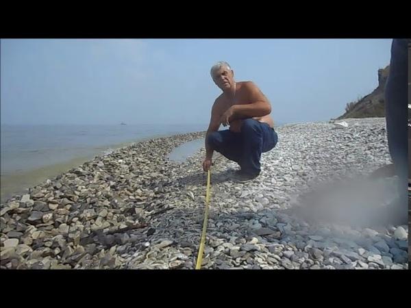 Работа сотрудников рыбохраны на месте гибели рыбы с Климовка Измеряем рулеткой
