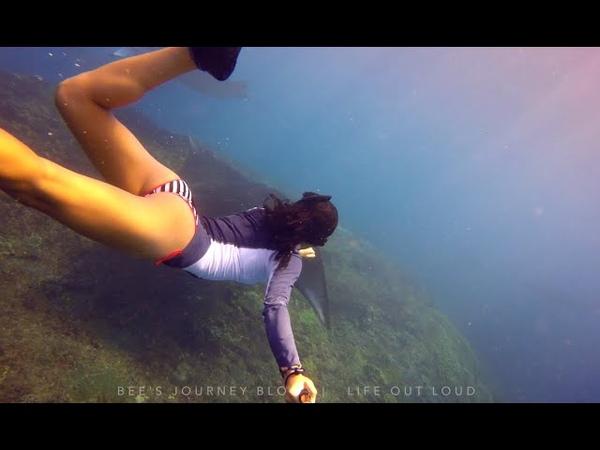 SO MANY MANTAS Nusa Penida Bali Freediving Day Trip