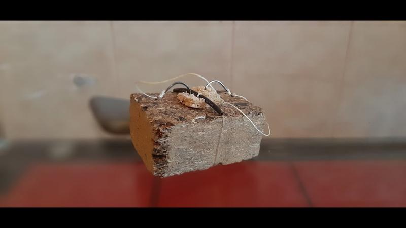 ТОП 3 способов крепления крючков к макухе жмыху при ловле на макушатник Советы подписчиков
