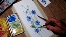 Hedwig's Art Tutorial cornflower watercolor, real time.
