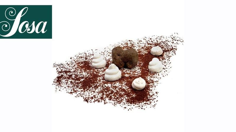Salty Truffle Meringue · Albuwhip · Texturizers