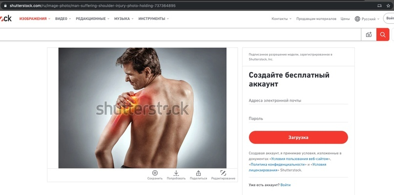 Как бесплатно скачивать с Shutterstock, изображение №3