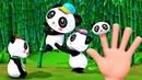Развивающие песенки Литл Бэйби Бам - Папа пальчик и счет для малышей