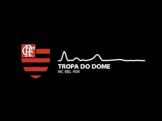 NOVA MÚSICA DO FLAMENGO - TROPA DO DOME   | MC BIEL PDR