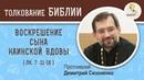 Воскрешение сына Наинской вдовы Воскресное Евангелие Протоиерей Дмитрий Сизоненко Библия