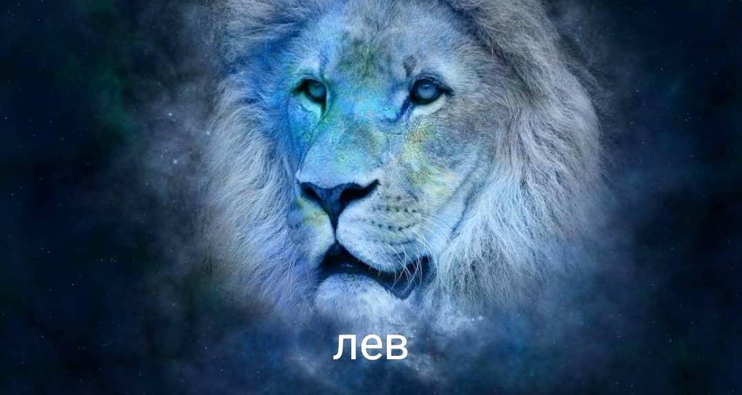 Хештег знакизодиака на   Салон Магии и мистики Елены Руденко ( Валтеи ). Киев ,тел: 0506251562  A6yF83hCOyc