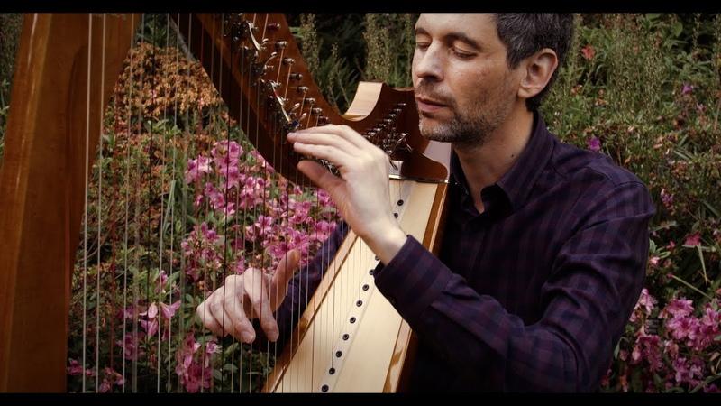 Rimsky Korsakov's Scheherazade Josh Layne harp