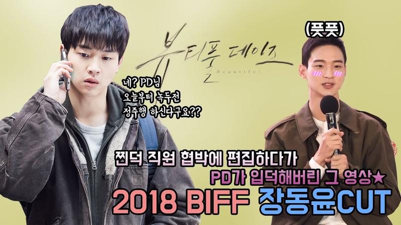 BIFF 장동윤 개인CUT|Jang Dong Yoon CUT|찐덕 협박에 편집하다 PD가 입덕해버렸...|뷰티풀 데
