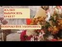 УКОРЕНЯЕМ РАЗНЫЕ ЦВЕТЫ ИЗ БУКЕТА. Розы, альстромерии, эустому, хризантему, гвоздику. Часть 1.
